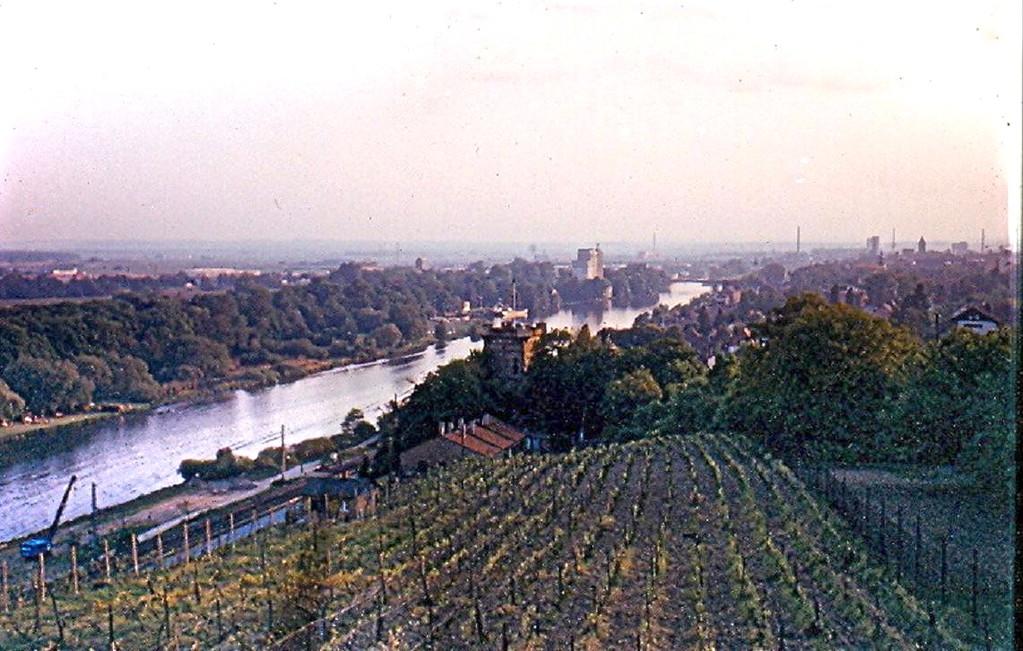 Ansicht Schweinfurts von Osten (Morgenseite) im Jahre 1970 - Danke an Klaus Best
