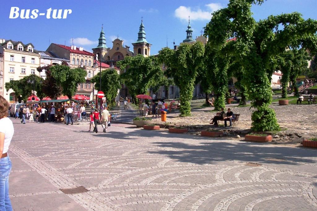 перевозки поездки в Пшемысль Польша, из Пшемысли