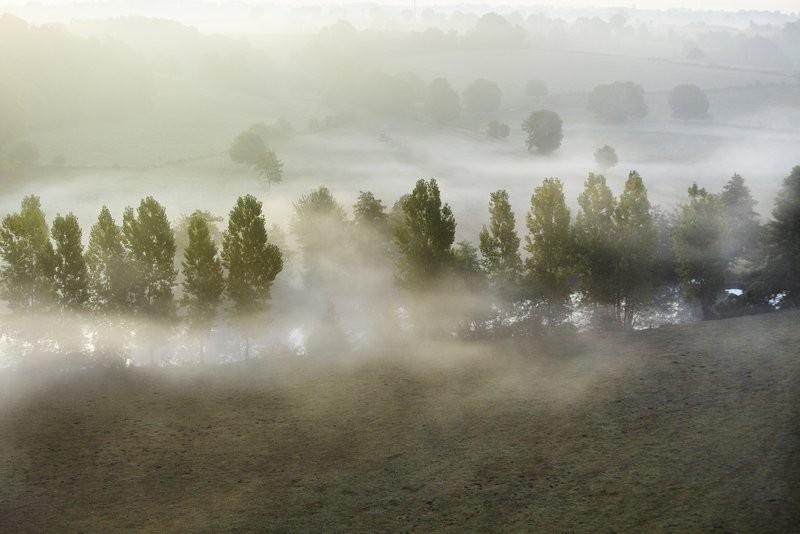 Le bocage sous la brume