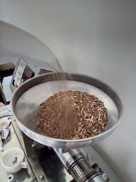 Les graines prêtes à être broyées.