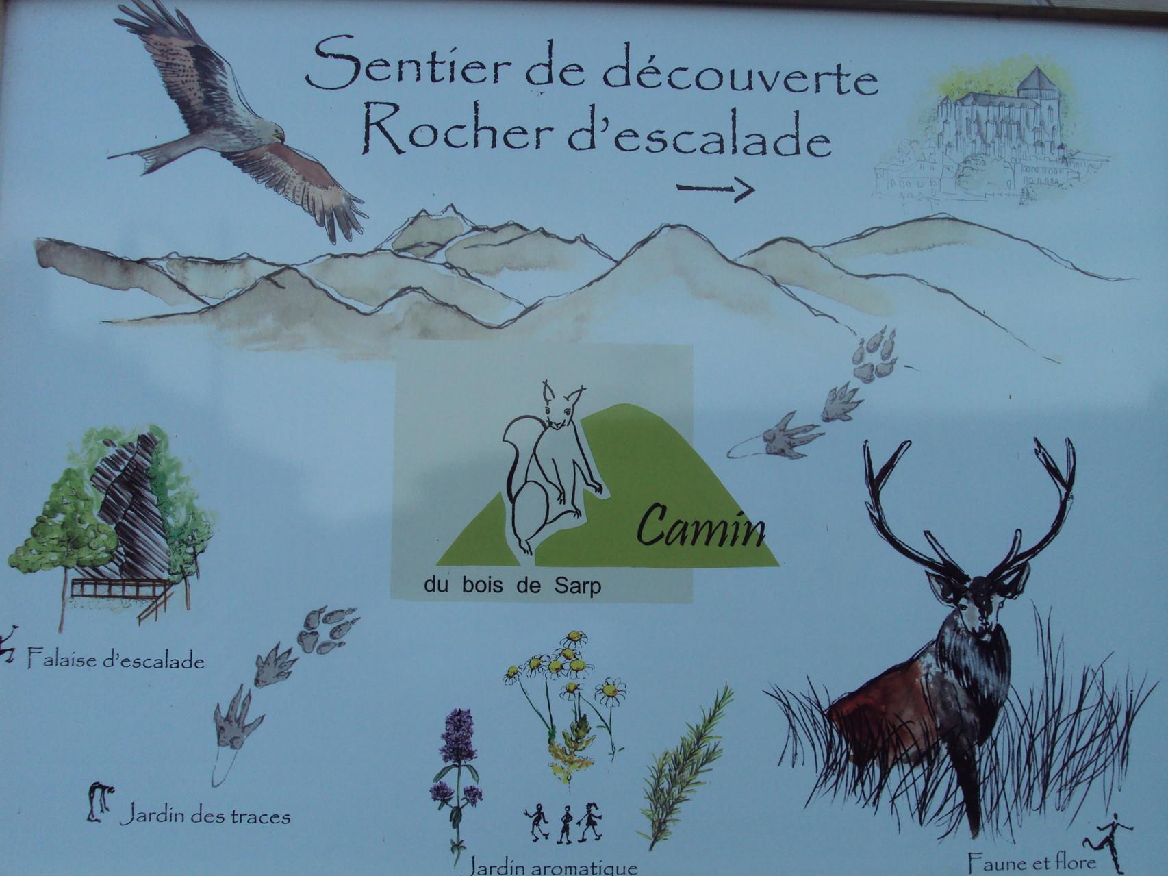 Pedagogical trail