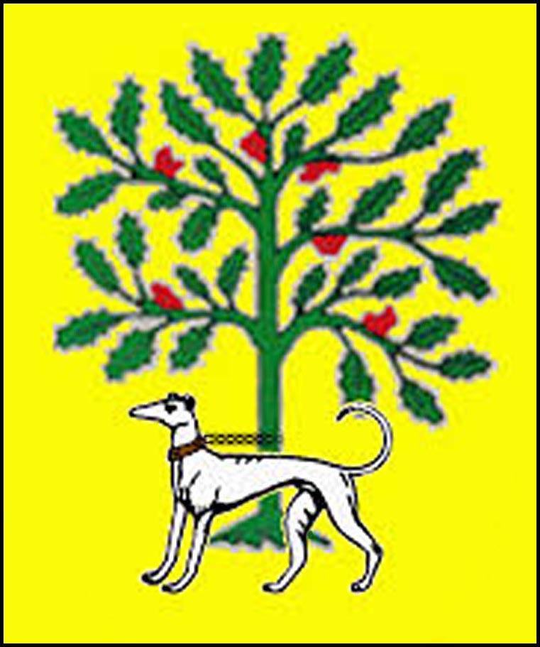 Escudo de los Acevedos.