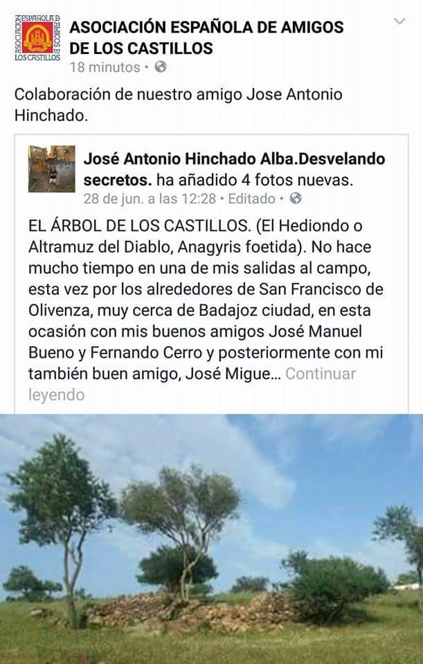 Publicado por la Asociación Española de Amigos de los Castillos.