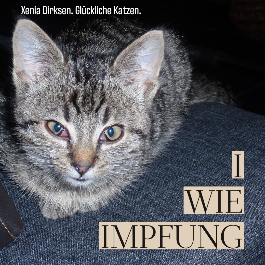 Xenias Katzen-ABC: I wie Impfung