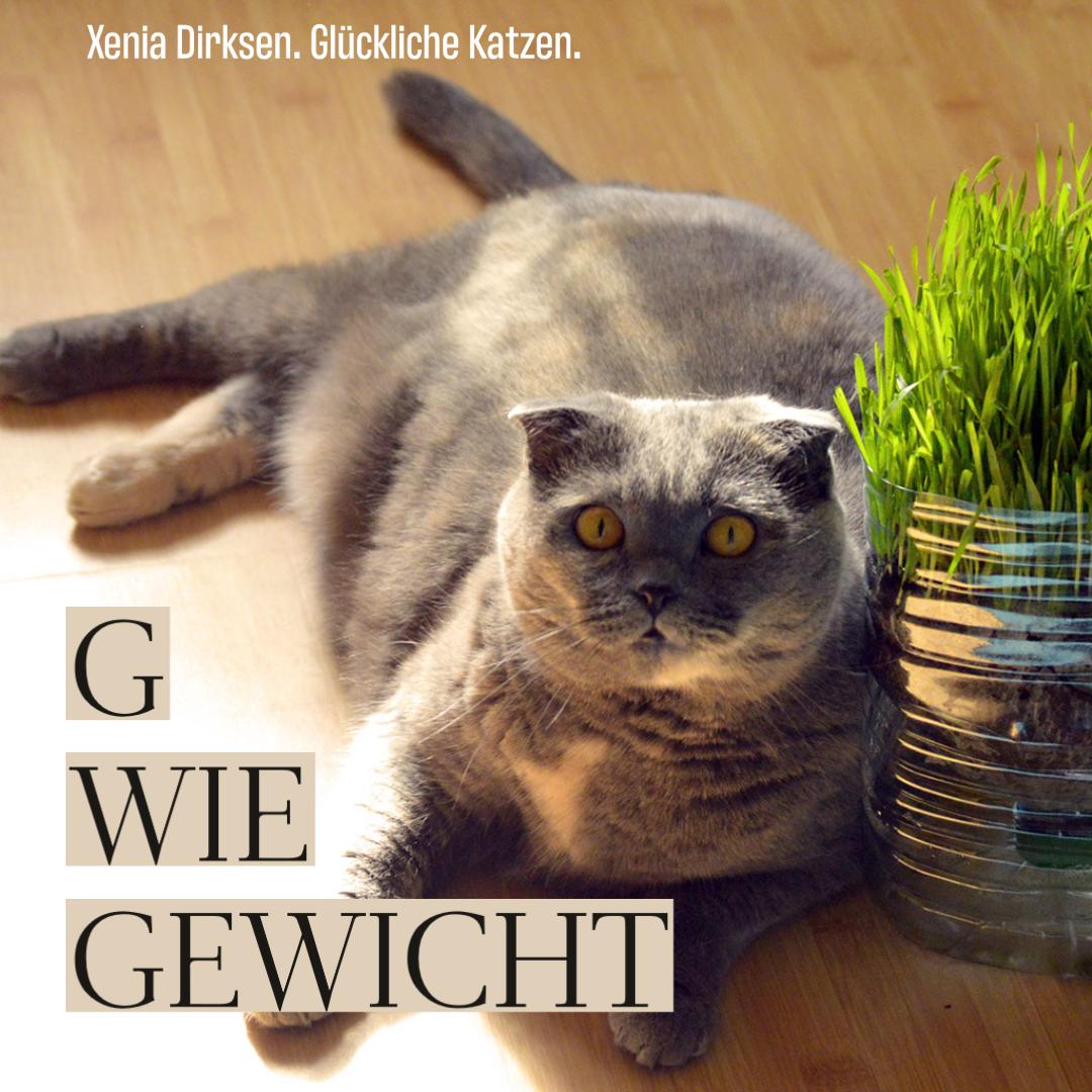 """Xenias Katzen-ABC: """"G wie Gewicht"""""""
