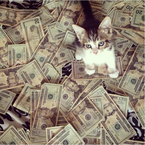 住宅ローン繰り上げ返済と猫