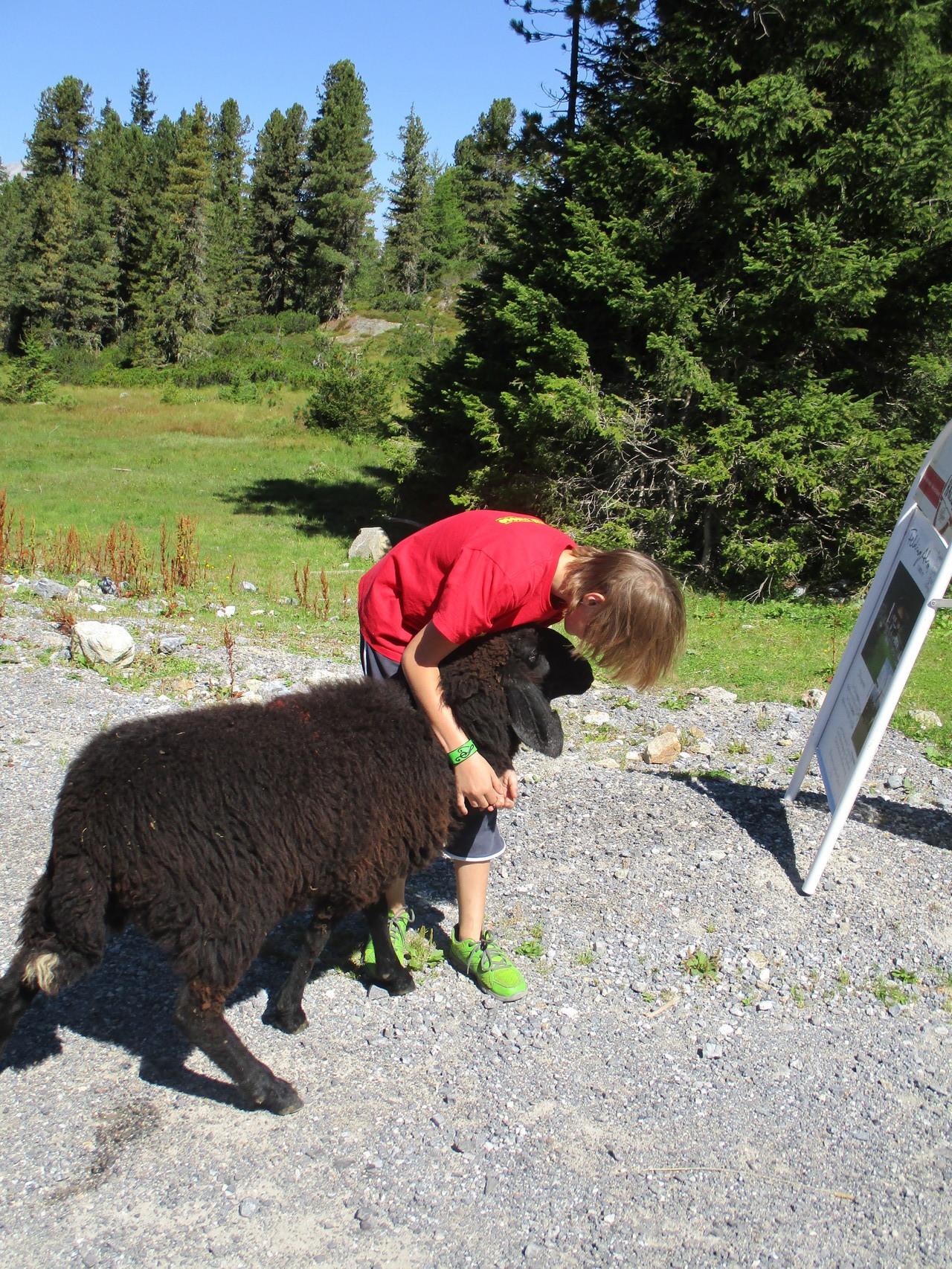 Laura mit unserem schwarzen Schaf