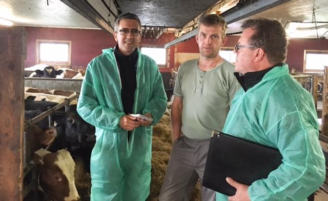 Her er jeg på et av mine gårdsbesøk for å finne ut mer om norsk melkeproduksjon.