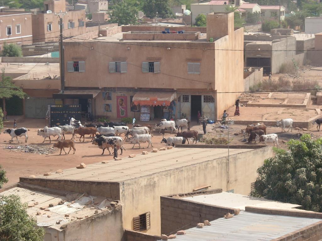 Bamako - vue de notre villa