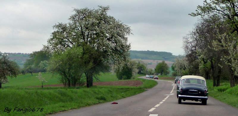 En route vers Morsbronn