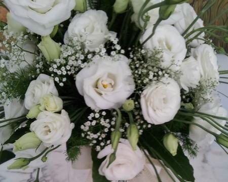 Lisianto, nell'addobbo al matrimonio, simbolo di eleganza e grazia