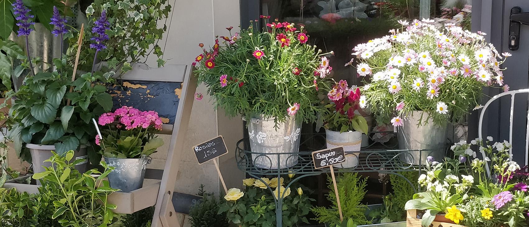 Abonnements floraux La Rose des Vents