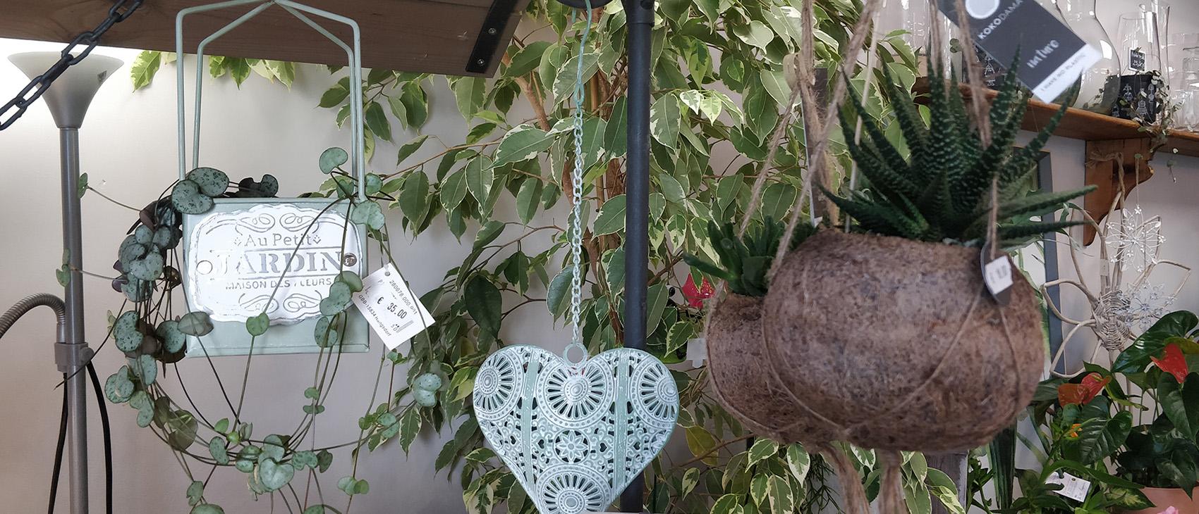 Boutique fleurs et cadeaux - La Rose des Vents