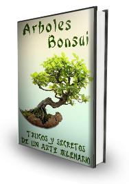 http://comocuidarun-bonsai.blogspot.com/