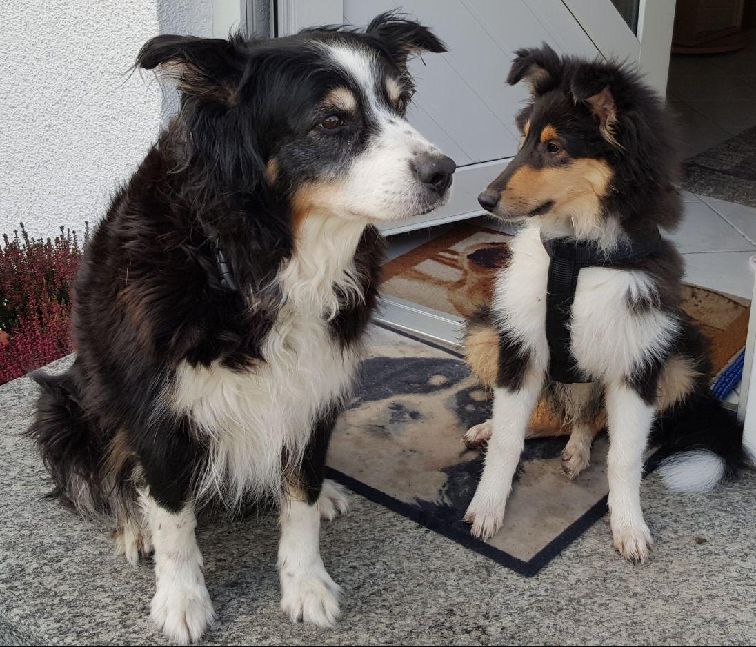 Betty mit ihrer Mitbewohnerin