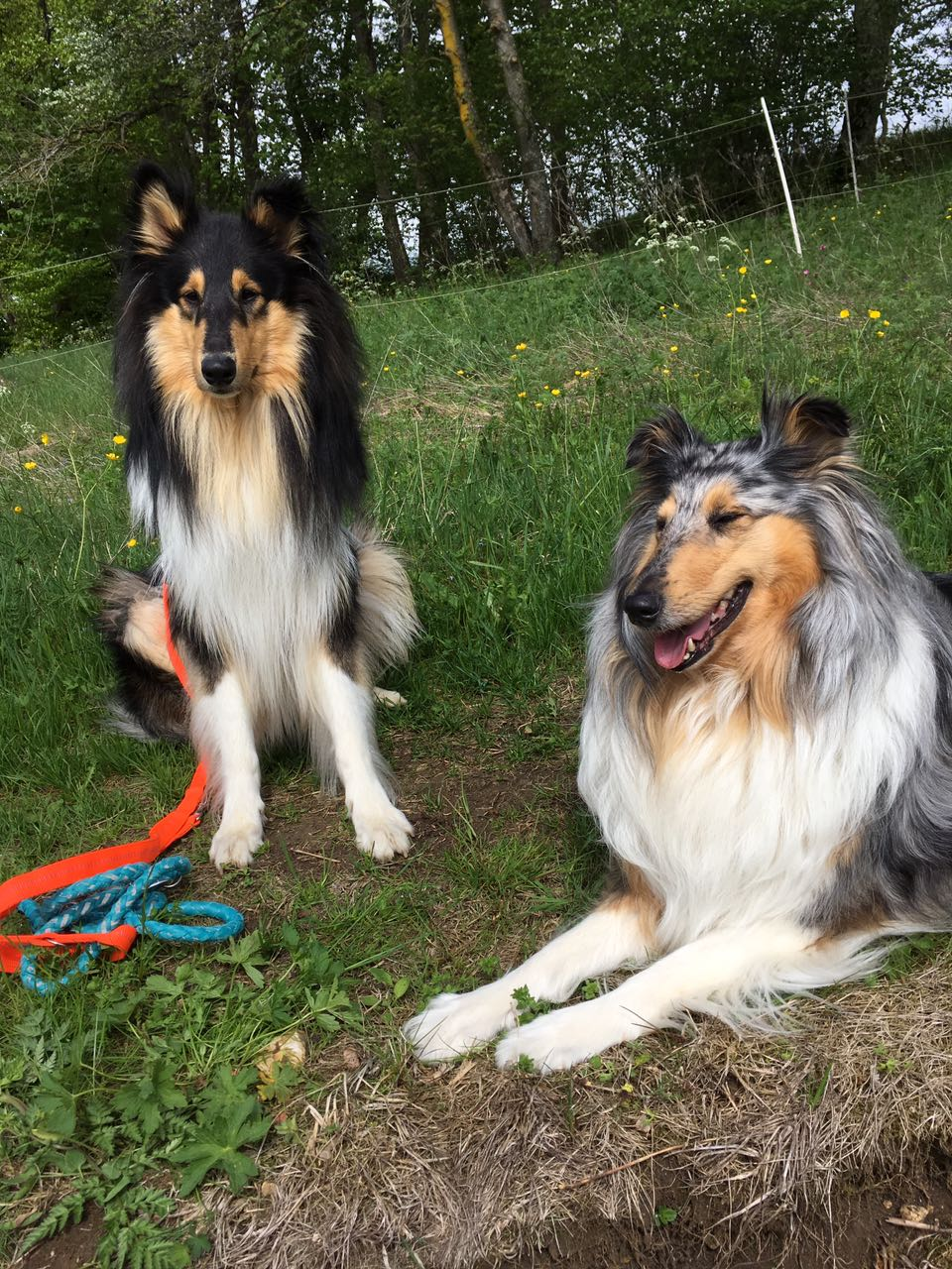 Alvin mit seiner Freundin Mila