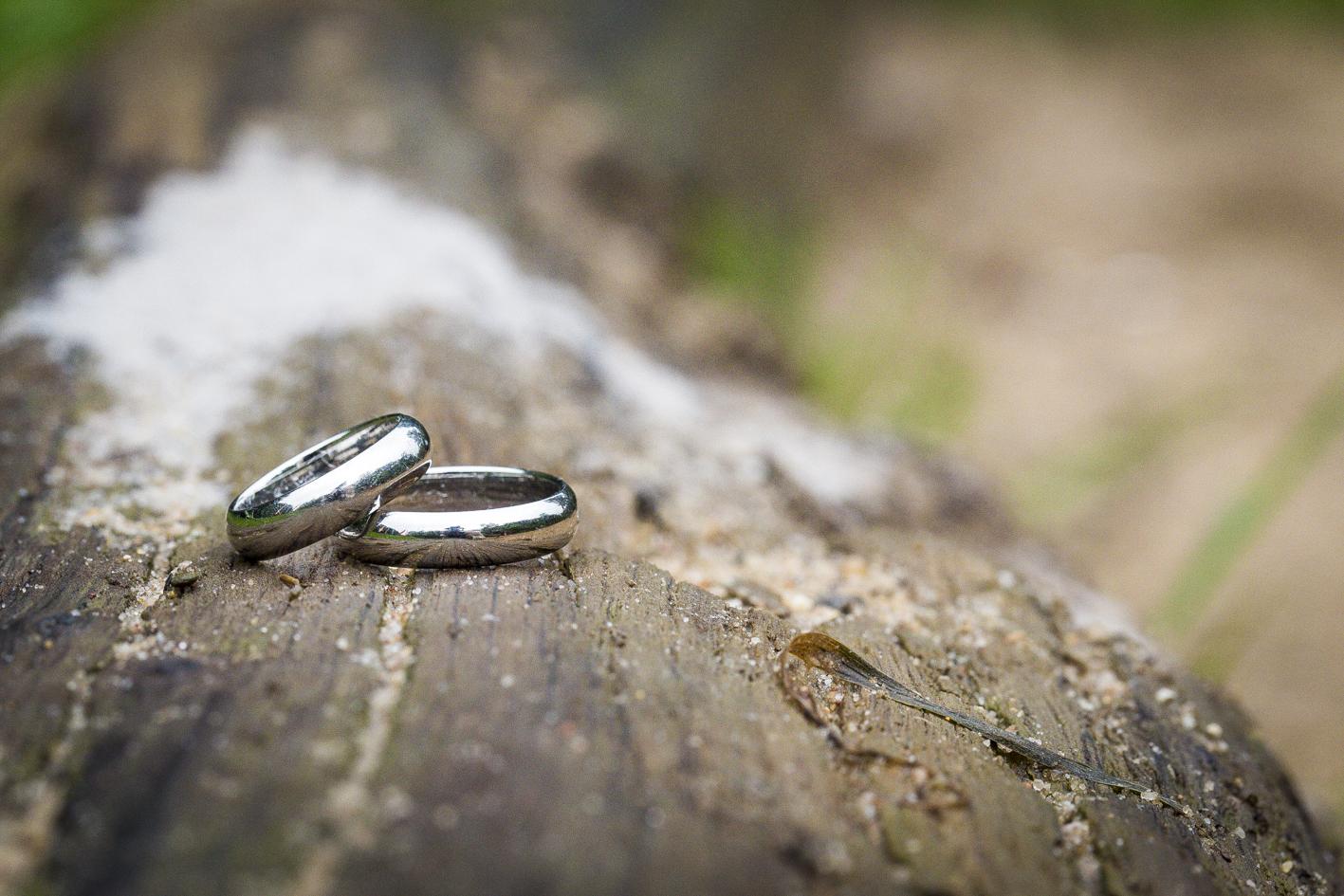 Ringe-Eheringe-Baumstamm