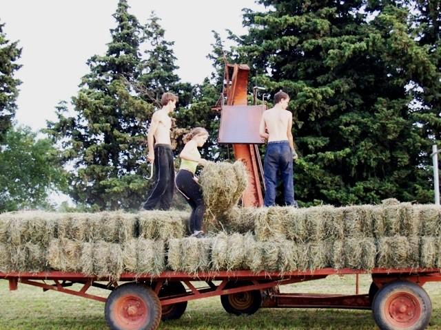 """Longo Maï's"" landbrugskooperativ i Schweiz"