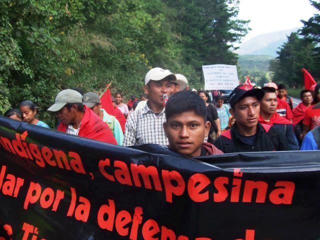 Guatemalas godt organiserede venstreorienterede bondebevægelse