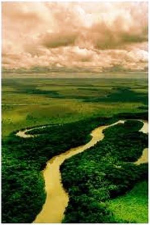 Arauca-provinsen