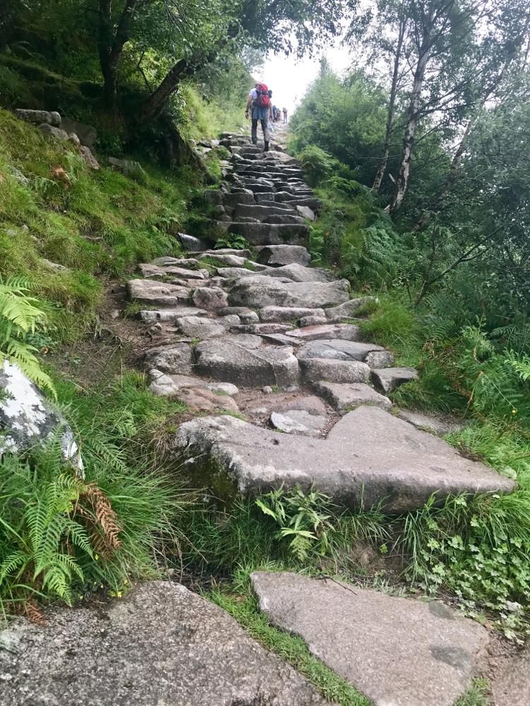 Ein Stück Ben Nevis (höchster Berg Schottlands) erwandert. 1.345 m ist er hoch......wir sind irgendwann umgekehrt ;)