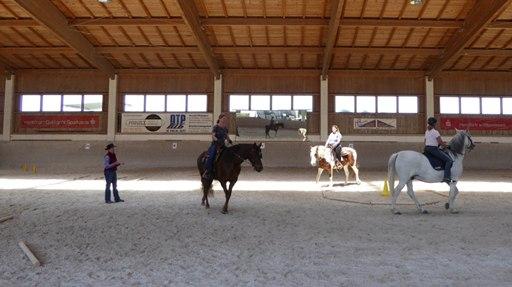 Cowboy Dressage-Kurs mit Barbara Wagner