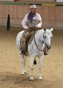 Horsemanship-Kurs mit Paul Dietz 2016 und 2017 in Deutschland