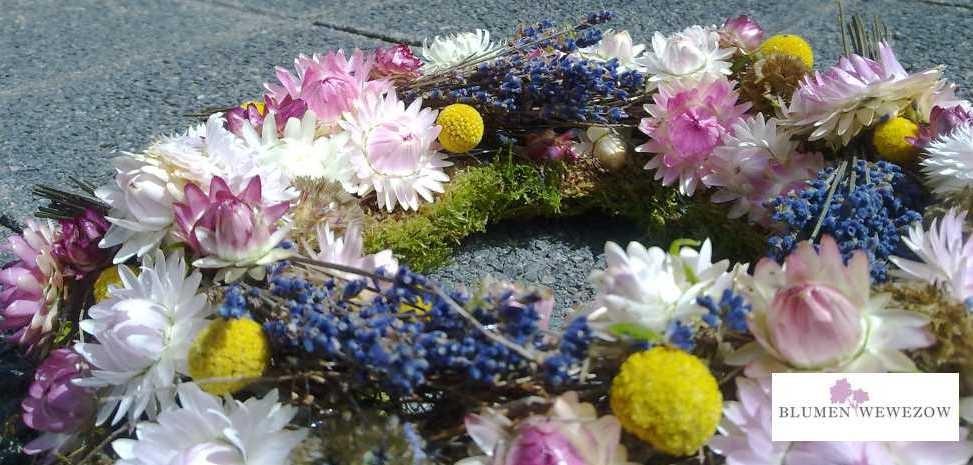Pflanzen für Garten und Balkon  - Trockenblumen