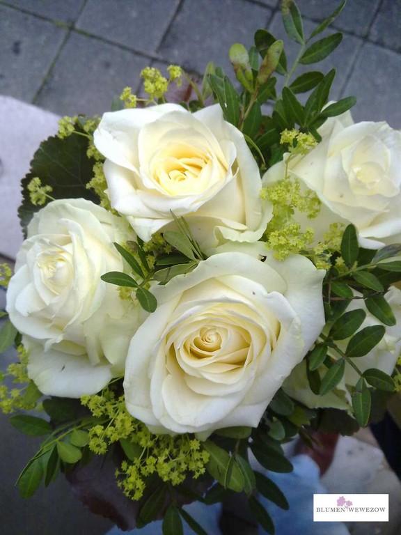 Blumen zum Geburtstag - Schneeweißchen