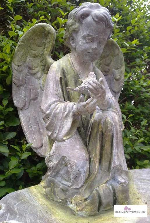 Pflanzen für Garten und Balkon  - Engel aus Stein