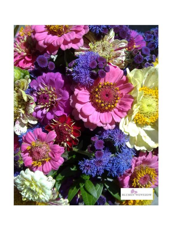 Sommerblumen Heidelberg - Bunte Ziniensträußchen