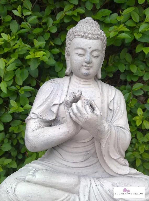 Pflanzen für Garten und Balkon  - Buddha aus Stein