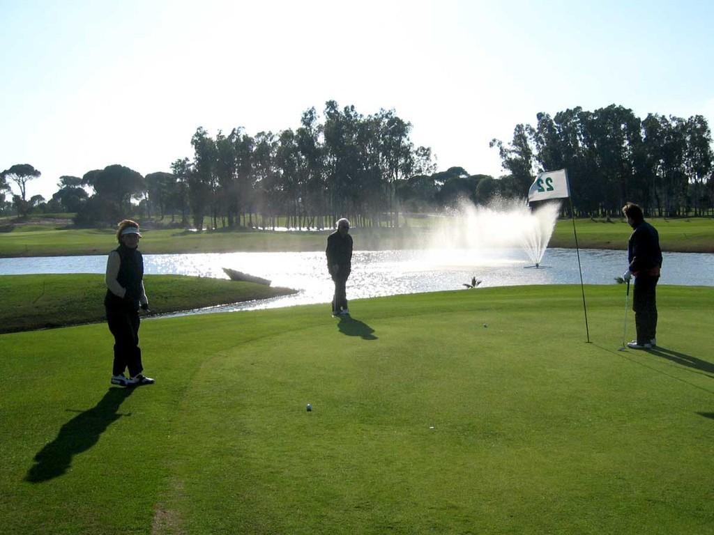 Tat-Golf, Grün 22