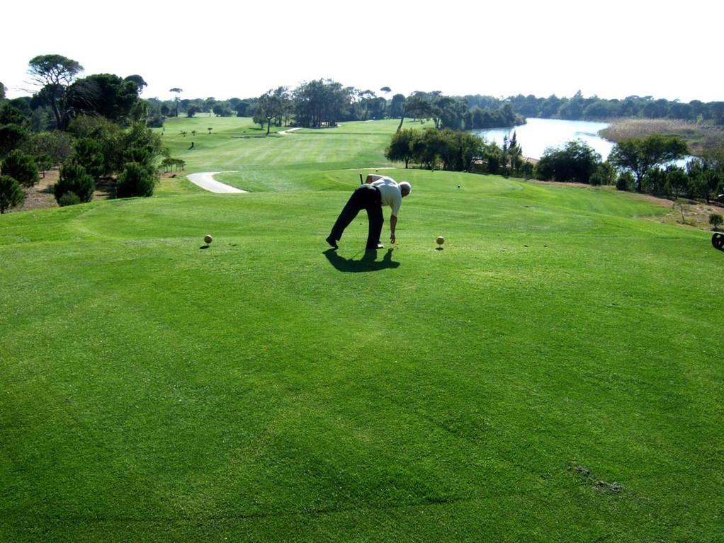 Tat-Golf, Tee 6