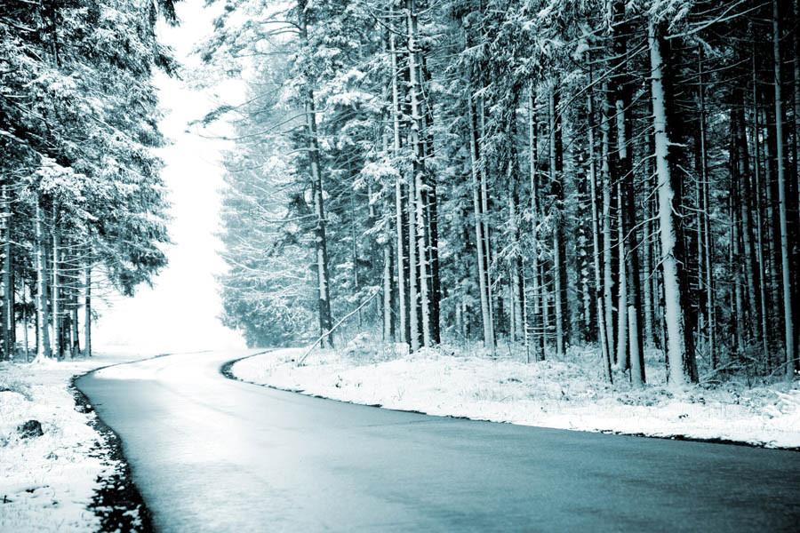 Waldstraße nach Salzstetten