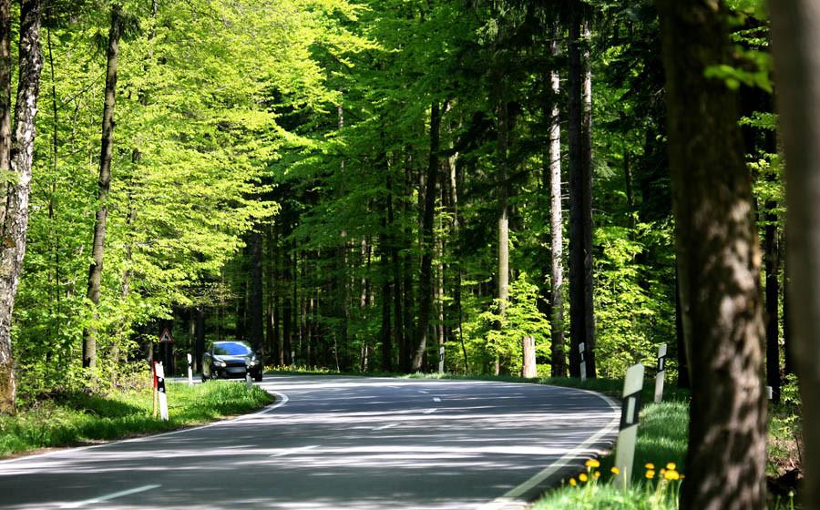 Waldstraße nach Dornstetten