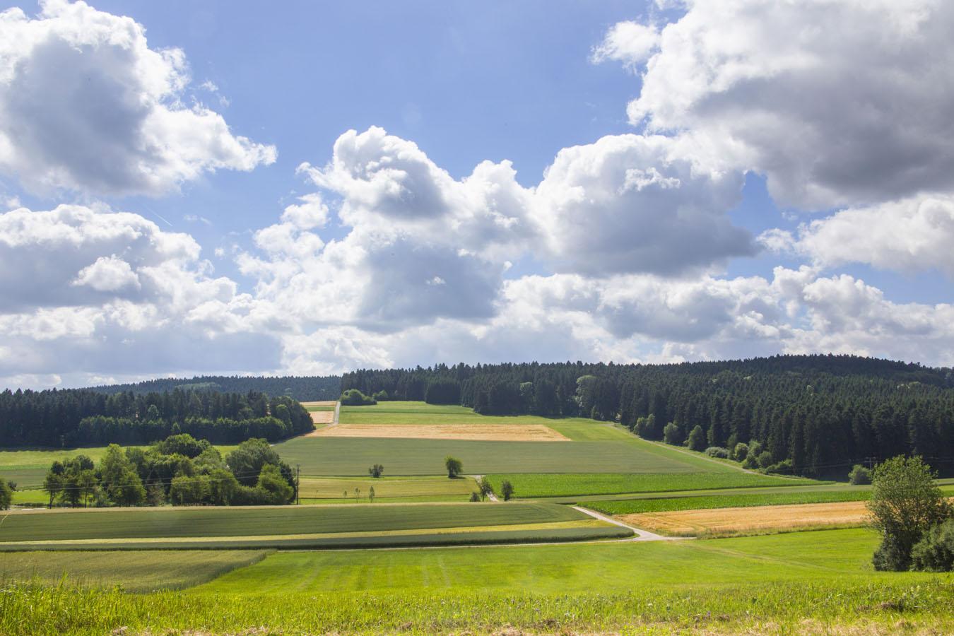 Vom Hörschweiler Industriegebiet Blick ins Tal
