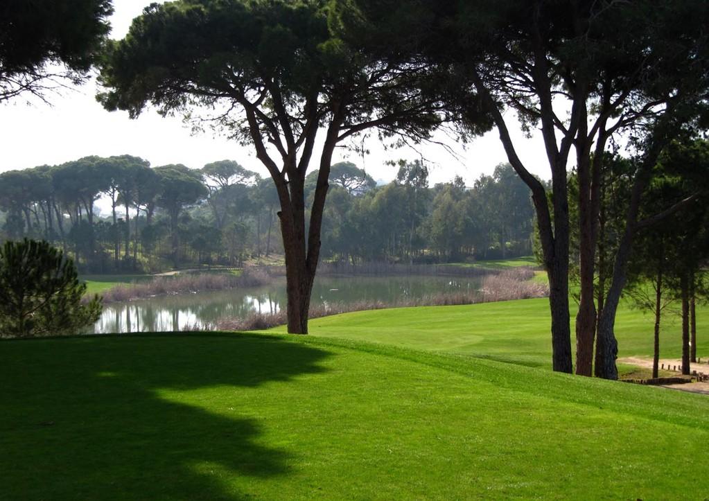 Faldo, Blick auf die 9 vom Prince-Course
