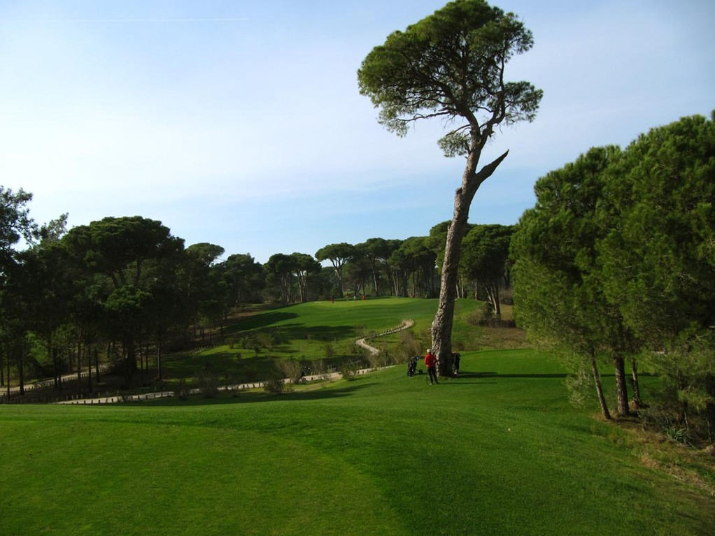 Faldo, Kings-Course, Par 3