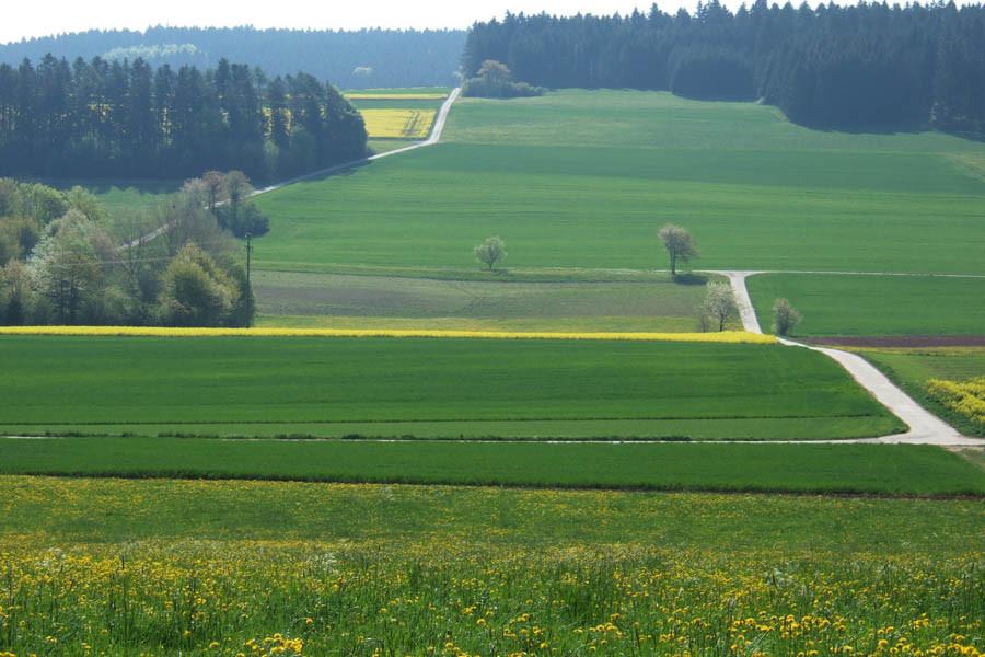 Blick zum Hörschweiler See