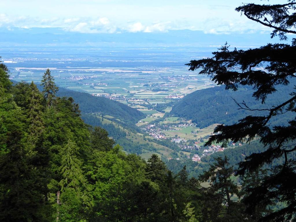 Blick ins Münstertal, nach Staufen und in die Rheinebene.