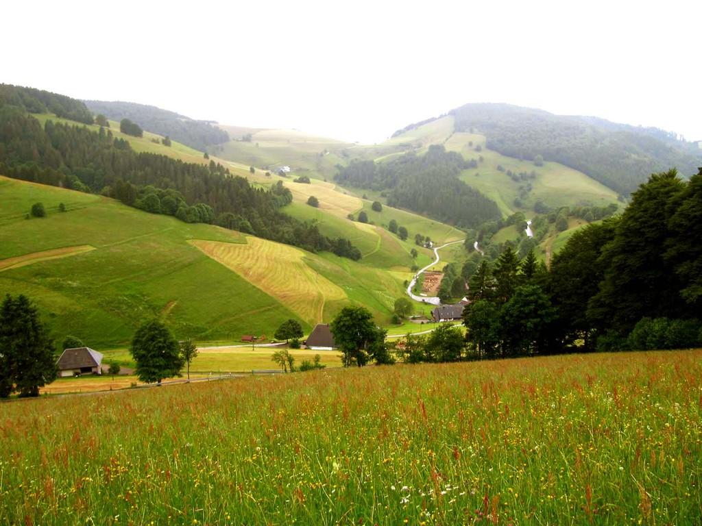 Kurz vor dem Etappenziel. Im Tal liegen Ober- und Unter-Neuhof.