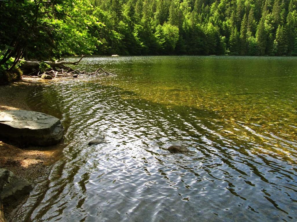 Eiskalt und glasklar: das Wasser im Feldsee.