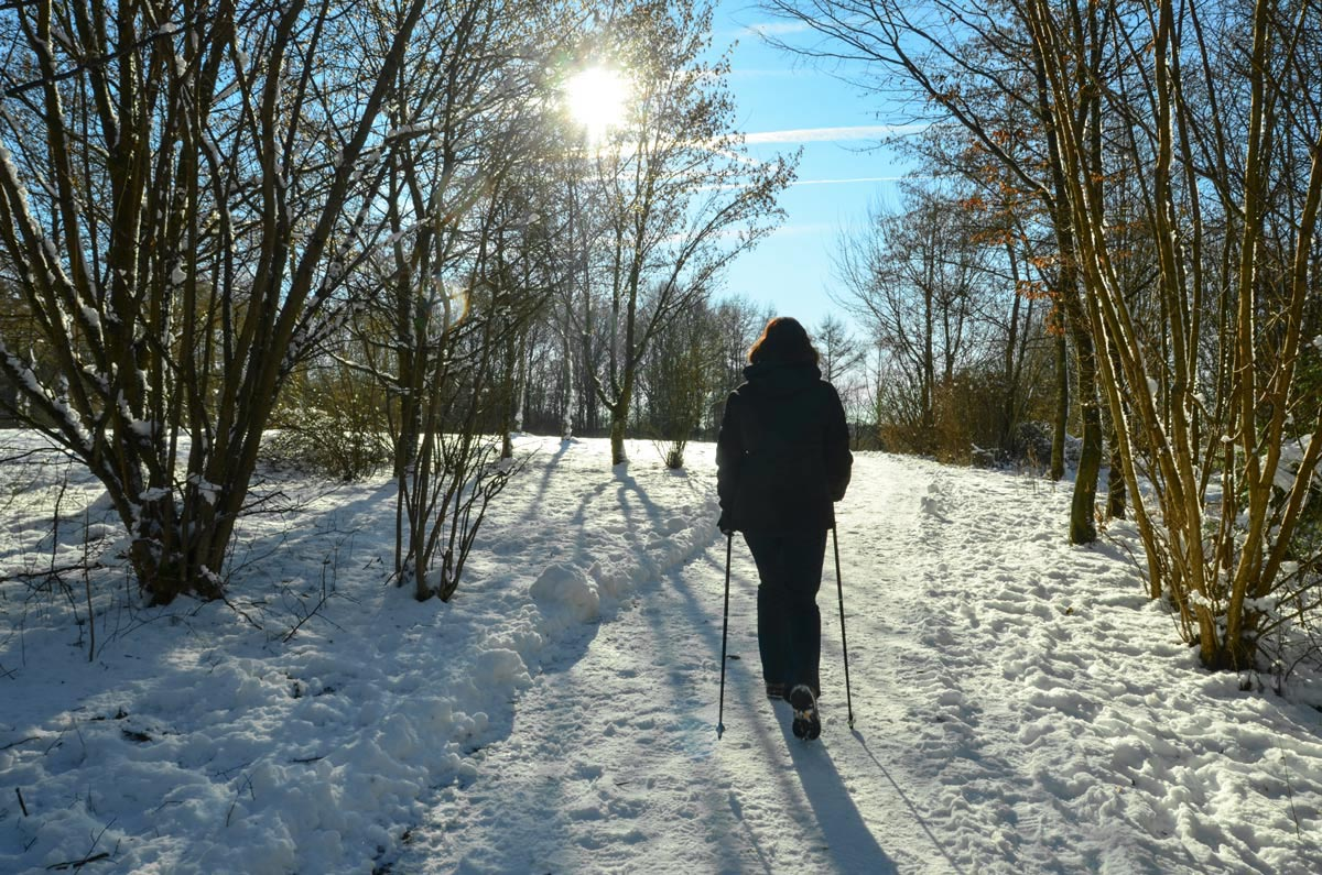 Nordic Walking im Winter