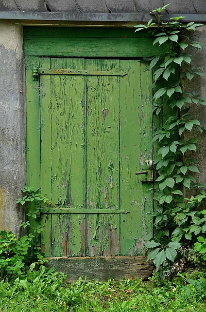 Alte Tür (1)