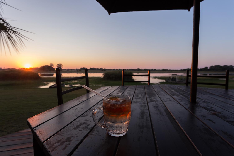 Botswana 2017 (Maun, Thamalakane River Lodge)