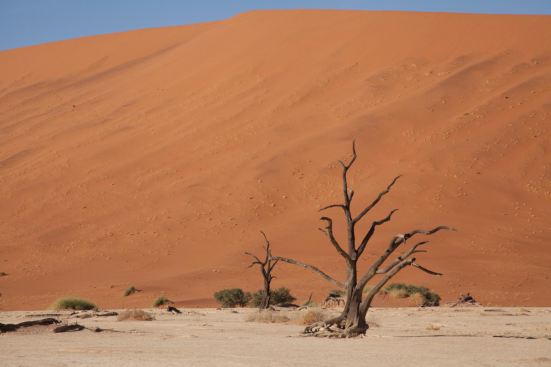 Namibia 2012 (Dead Vlei)