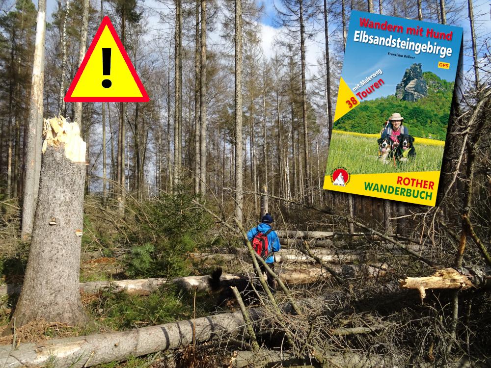 Status-Update April: Aktuell unpassierbare Wege im Elbsandsteingebirge