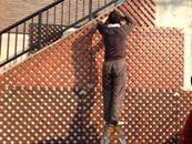 イオニクスでコンクリート外壁のカビ落とし