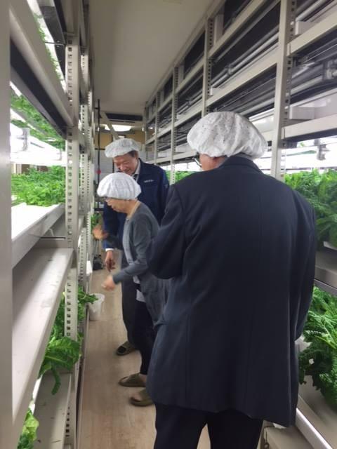植物工場視察